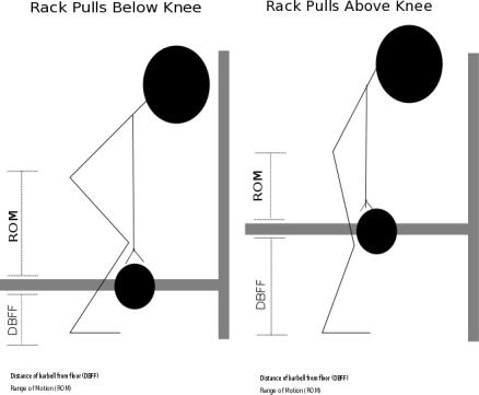 Rack Pull Above Knee Diagram 1.png