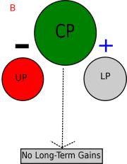 Conjugate periodization 2