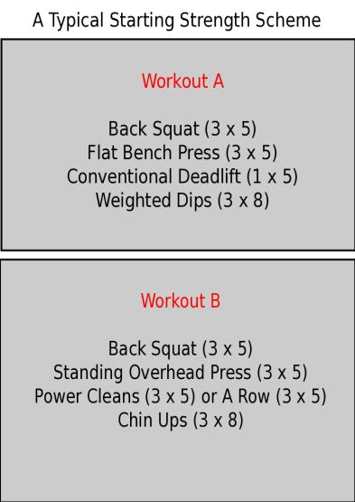 starting strength origial.png