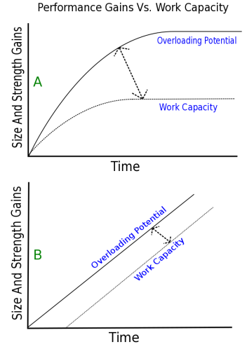 Work Capacity graph.png