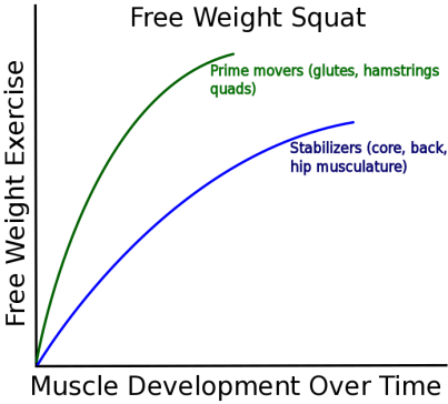 Free Weight Squat.png