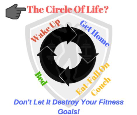 Circle Of Life 1.png